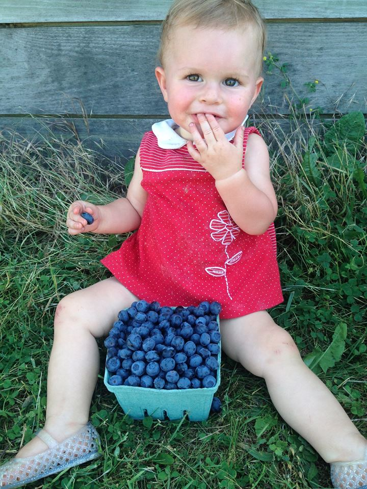 Kid eating blueberries